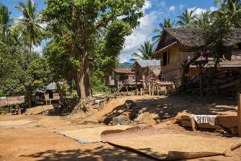 LSC-Ban-Bo-village-43