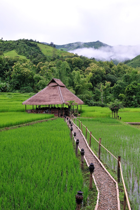 Kamu-Lodge-Laos-Landscape